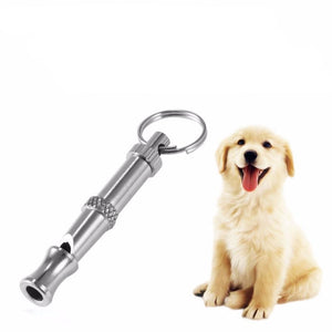 Pet Training Stainless Steel Whistle Key Chain