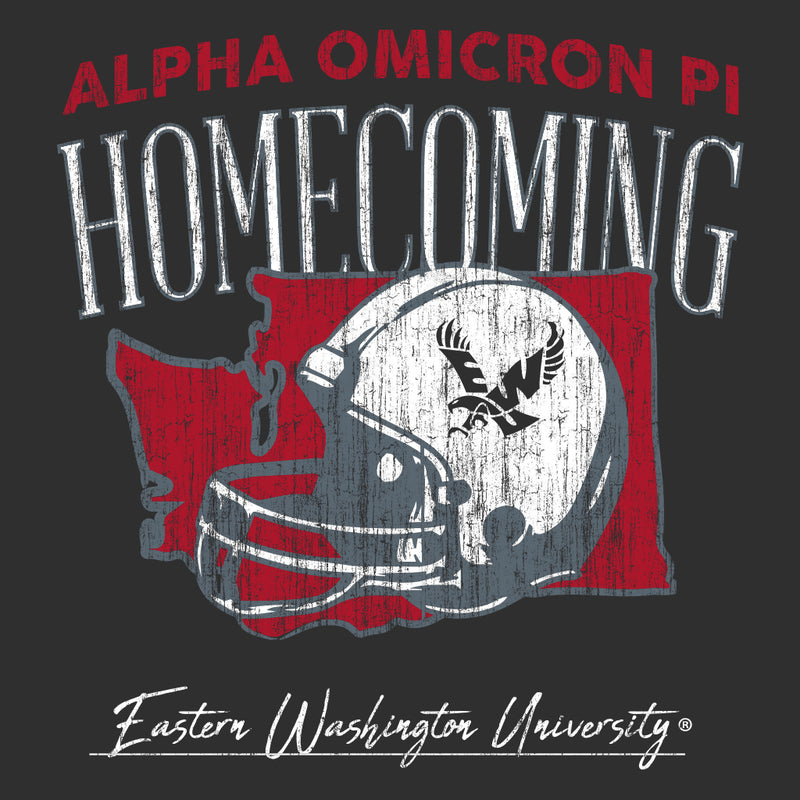 Alpha Omicron Pi Washington Helmet Homecoming Design