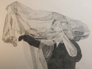 Study: Starling graphite on 90 lb. Stonehenge by Claire Swinford