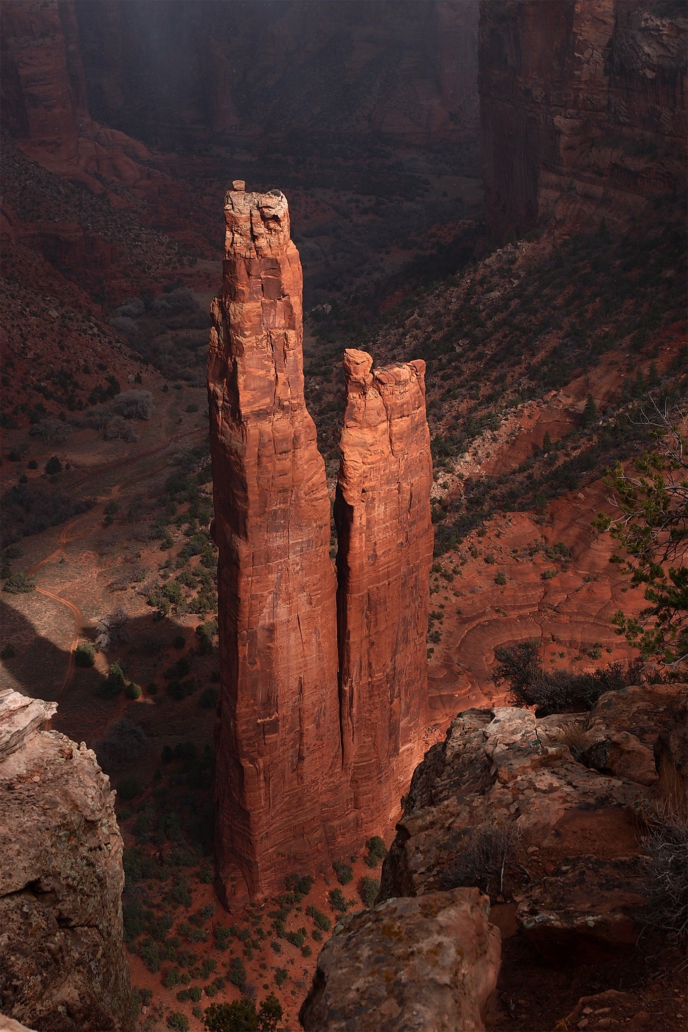 Spider Rock - photo on canvas by Dennis Nejtek