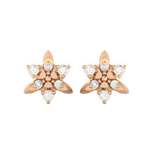 Load image into Gallery viewer, 18Kt rose gold real diamond earring 38(2) by diamtrendz