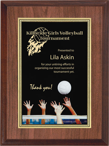 """Volley"" Activity Plaque"