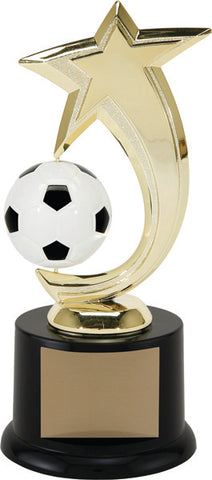 """Star Spinner Soccer"" Achievement Award"