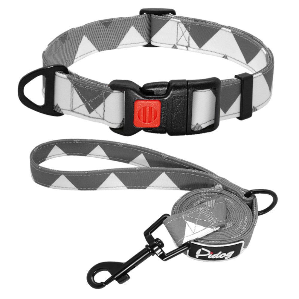 Pidog Pointed Grey Nylon Dog Kcollar Set