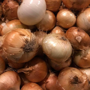 Yellow Onion ($2.00/2lbs/2-4 onions per order)