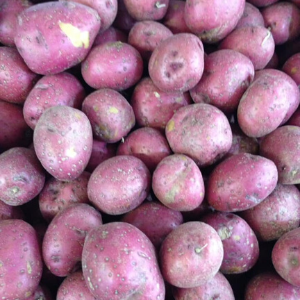Red Potatoes (2lbs mixed sizes typically smaller)