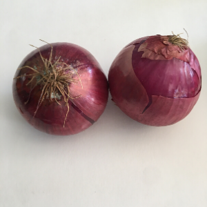 Red Onion (2lbs/ mixed sizes 2-4 per order)