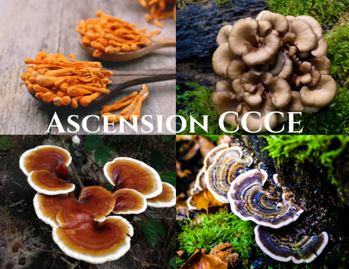 Ascension CCCE Blend