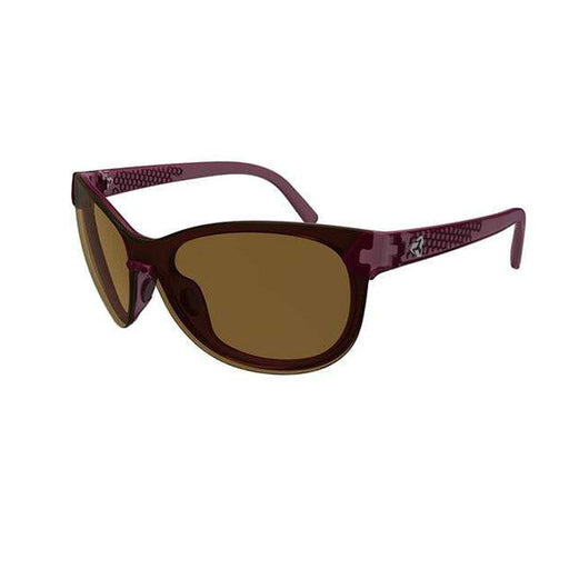 CATJA Purple / Brown Lens