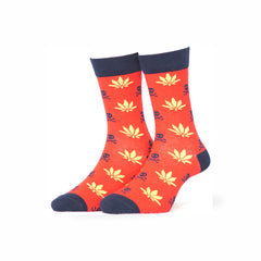 House of Socks - Character Socks Casual Canabies Starlet Socks