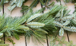 Mixed Fraser/White Pine Garland
