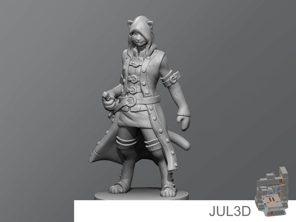 Cat rogue - JUL3D Miniatures
