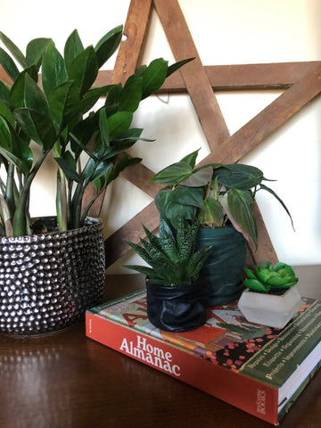 Upcycled Mini Plant Pot Cover from Leather Jacket
