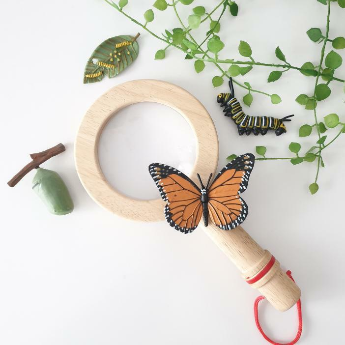 Bigjigs Wooden Magnifying Glass