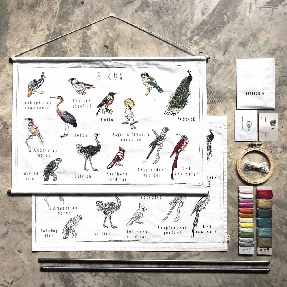 Numero 74 School Poster Kit - Birds