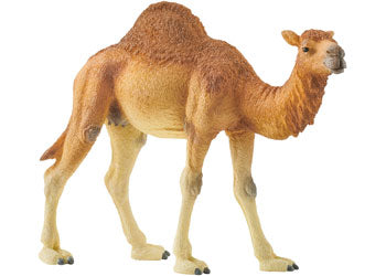Children_of_the_Wild-Australia Schleich Dromedary Arabian Camel 14832