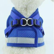 Load image into Gallery viewer, Dog Harness and Leash Set