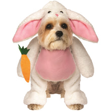 Load image into Gallery viewer, Walking Easter Bunny Pet Costume