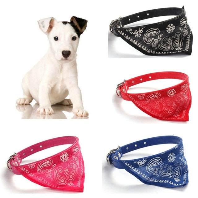 Pet Collar with attached  Bandana