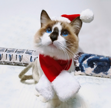 Load image into Gallery viewer, Christmas Hat Scarf Set for Small Pets
