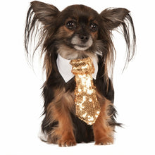 Load image into Gallery viewer, Gold Sequin Pet Tie