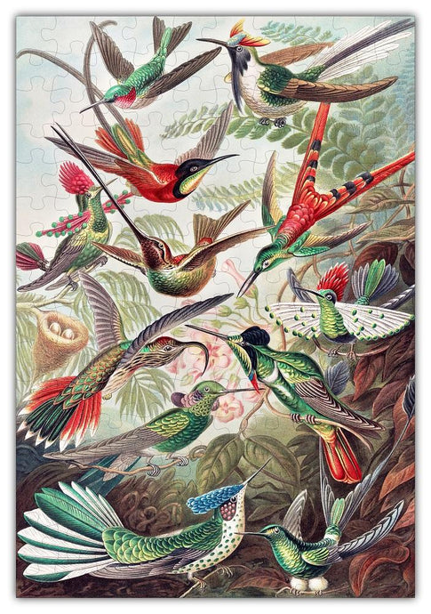 Vintage Hummingbirds Drawing Jigsaw Puzzle