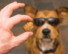 Load image into Gallery viewer, 'Beer Paws' Pumpkin Spice Beer Biscuits Dog Treats