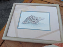 Load image into Gallery viewer, Sea Shell D. Morgan-Signed/Double Matted/Framed Two / Set