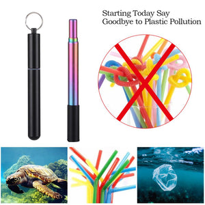 Reusable Collapsible Drinking Straw With Case