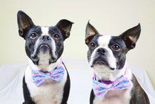 Load image into Gallery viewer, Frenchiestore Pet Bowtie | Mermazing