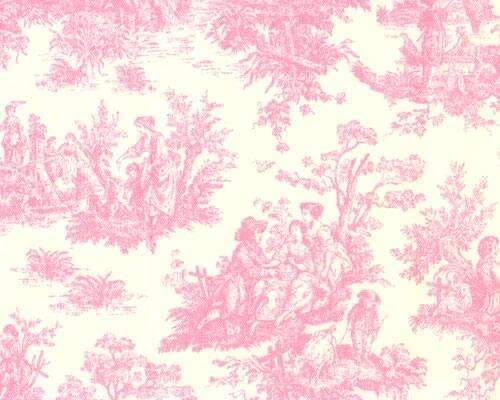 Baby Pink Toile