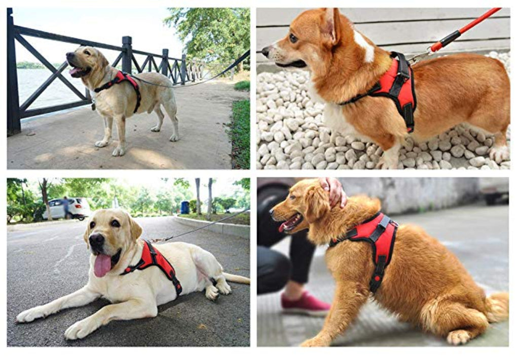 Dog Harness No-Pull Adjustable Outdoor Reflective Pet Vest Easy Control for Small Medium Large Dogs - NuoPets