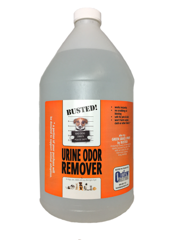 BUSTED! Urine Odor Remover - 1 Gallon