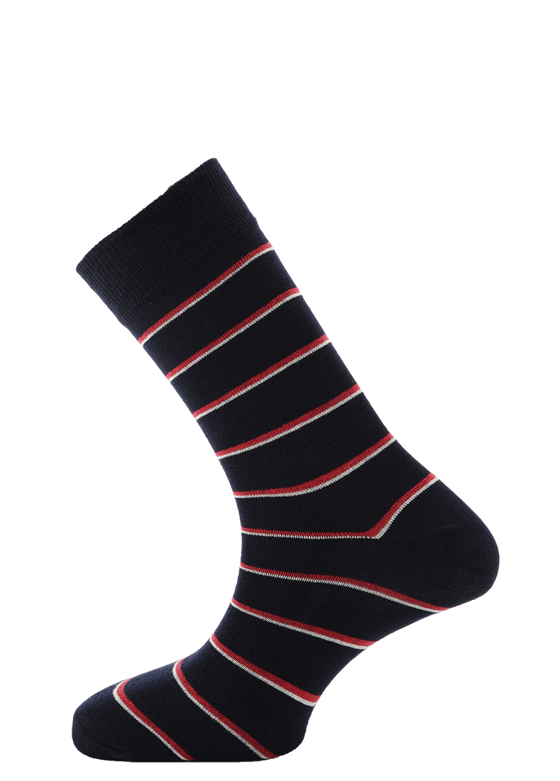 Horizon Royal Navy Dress Sock