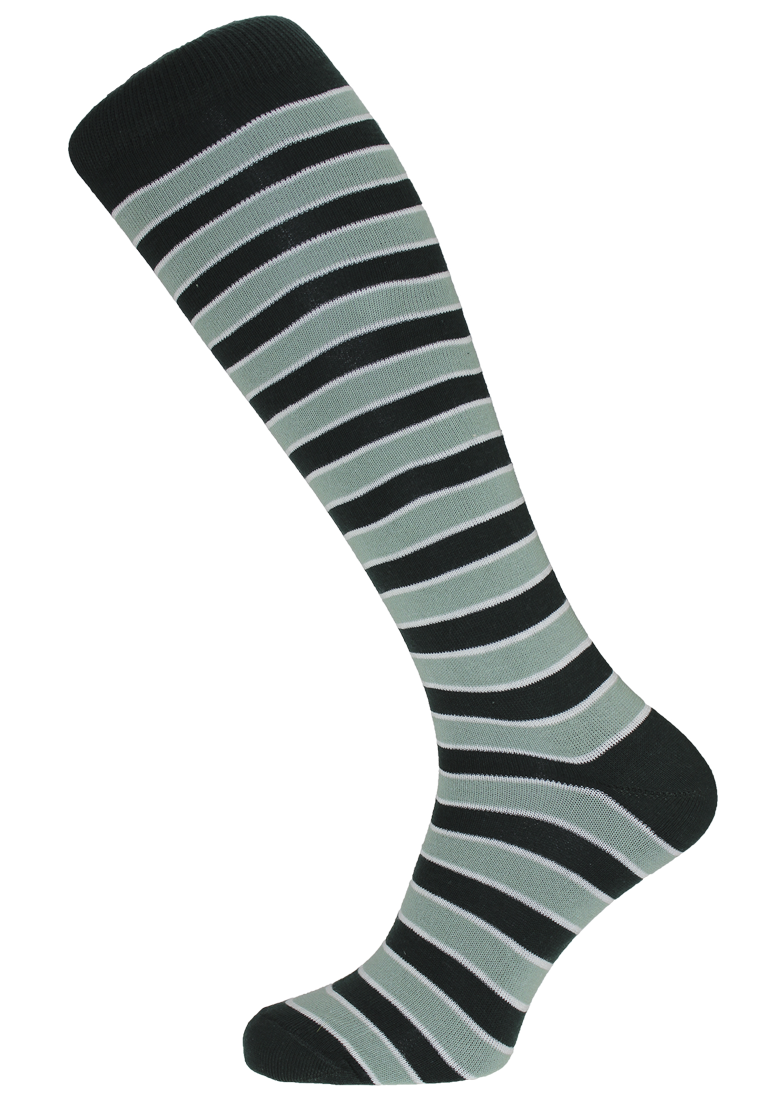 Horizon Sherborne Long Dress Sock