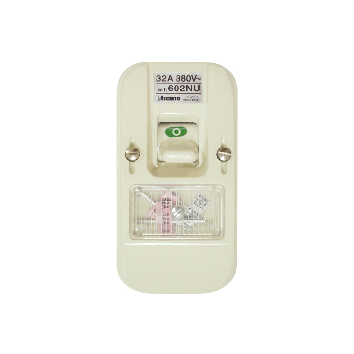 Bticino Fuse Switch  380VAC with 32 A Two Poles Surface Mounting Fused