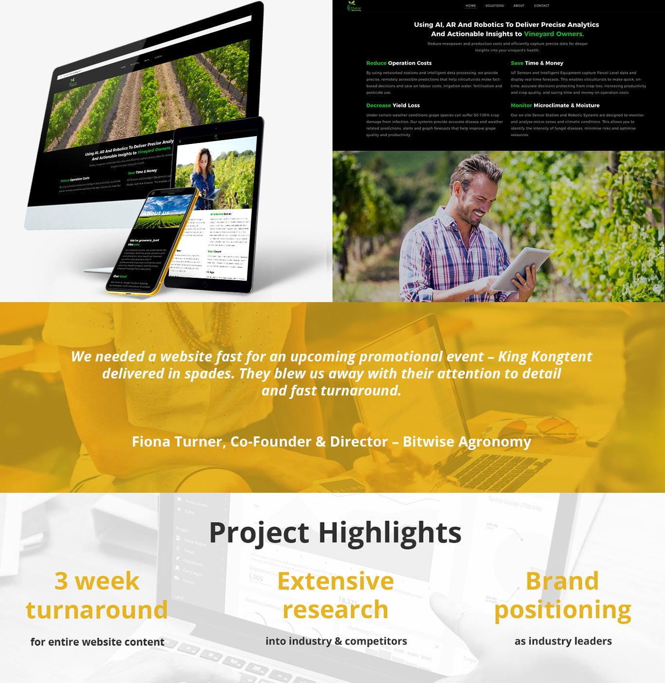Bitwise Agronomy - Content Writing Services Case Study, King Kongtent