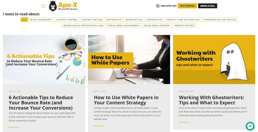 screencap of the Ape-X SEO and PPC Services blog page