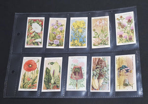 Cigarette collectors cards in protective sleeve