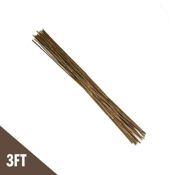 DL Wholesale Bamboo 3'  Natural Bamboo Stakes  (pack of 25)