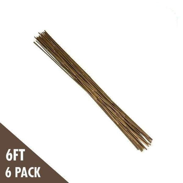 DL Wholesale Bamboo 6' Natural Bamboo Stakes Heavy Duty (6-pack)