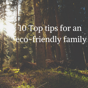 10 Top tips for an eco-friendly family