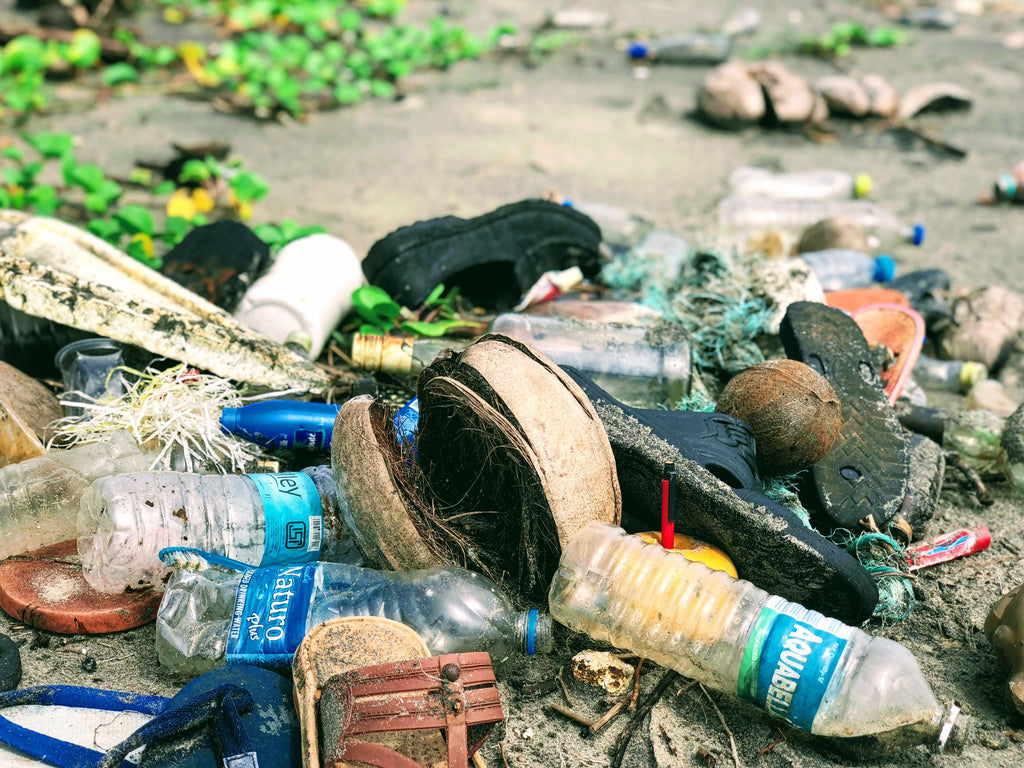 Plastic pollution and the damaging effects on our environment