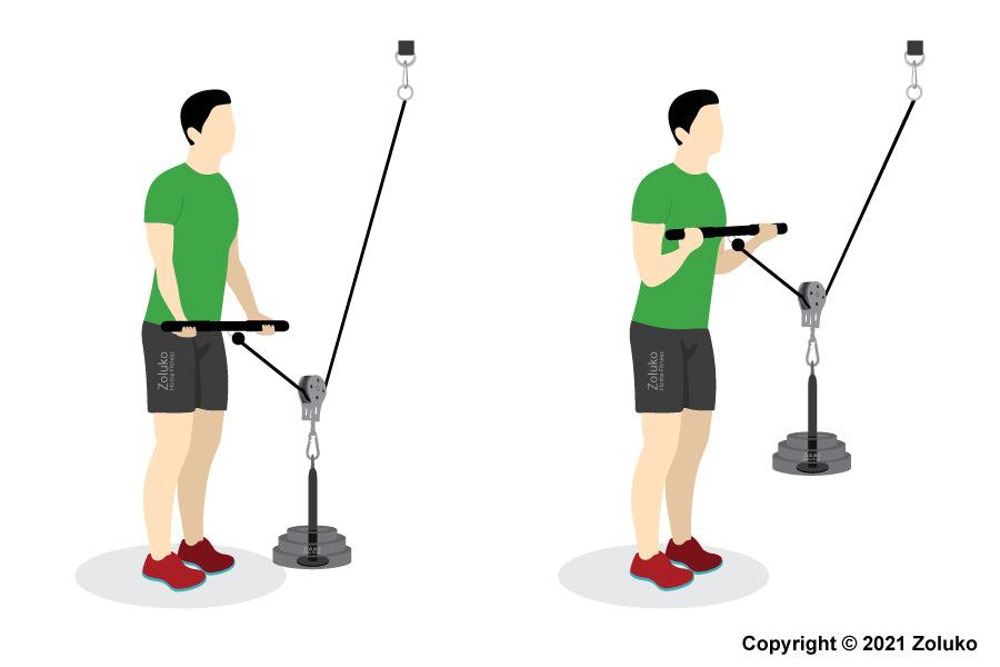 Biceps Cable Curl - Fitness Oefening - Executie / Uitvoering