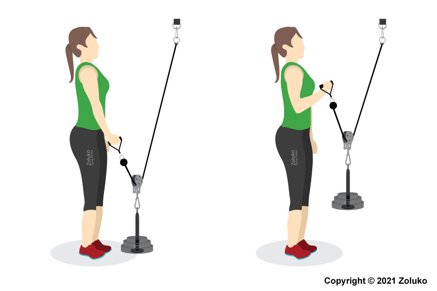 Single Arm Cable Curl - Fitness Oefening - Executie / Uitvoering