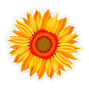 Ivory Parke:Sunflower Sticker,Sale,Ivory Parke