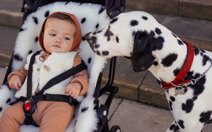 DALMATION - AS SEEN IN ABSOLUTELY MAMA MAGAZINE
