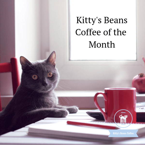 Kitty's Beans Coffee of the Month - 12 ounces - Kitty's Beans Coffee, Tea & Kitchen