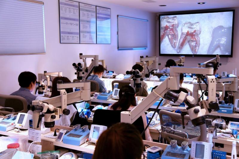 The Art of Endodontics Course