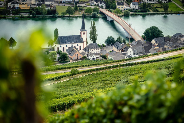 Getting you through 2020 with Richards top Rieslings